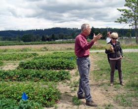 Photo of Strawberry Field Days at the Puyallup Research and Extension Center.