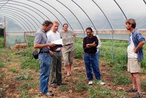 Photo of high tunnel research group meeting